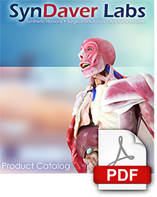 View Syndaver Labs Product Catalog