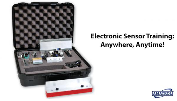 Electronic Sensor Training: Anywhere, Anytime