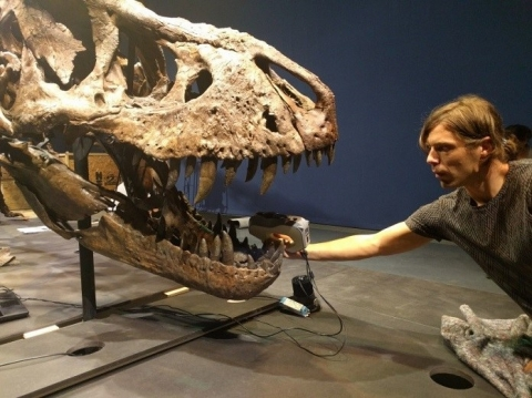 Putting together the puzzle of Tyrannosaurus rex fossils with 3D scanning