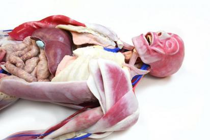SynDaver Labs